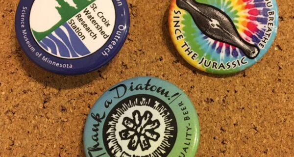 Diatom  Buttons