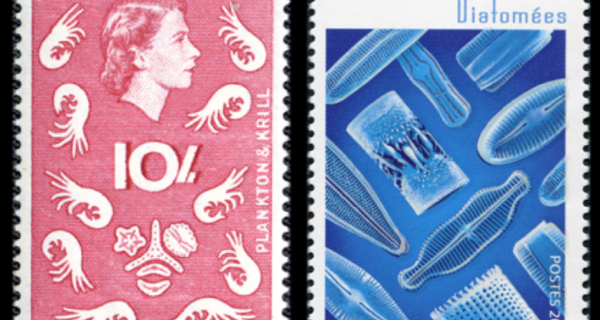 Fig 1 Oldest 1963 Newest 2016 Diatom Stamps