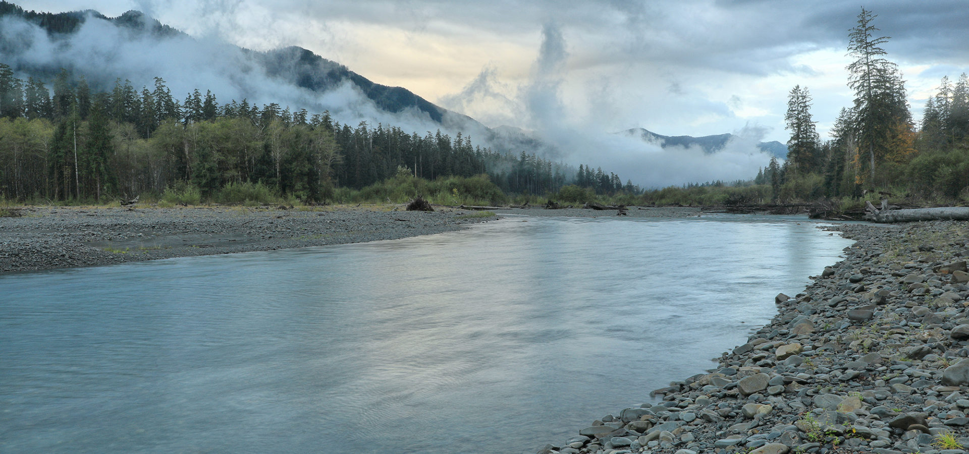 Hoh River2 Olympic Np Jefferson Co Wa Acressler