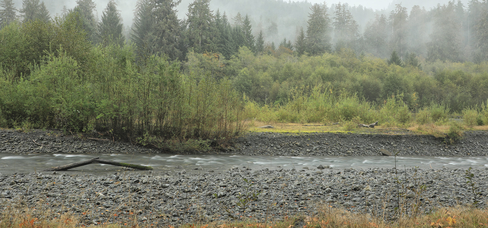 Hoh River Olympic Np Jefferson Co Wa Acressler