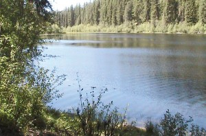 Hoskins  Lake  Montana