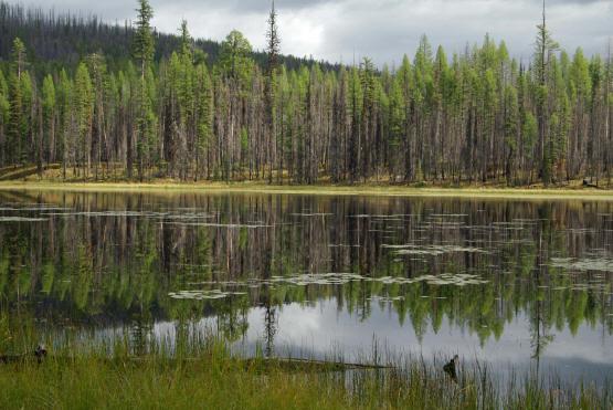 Howe  Lake 2  Gnp 1