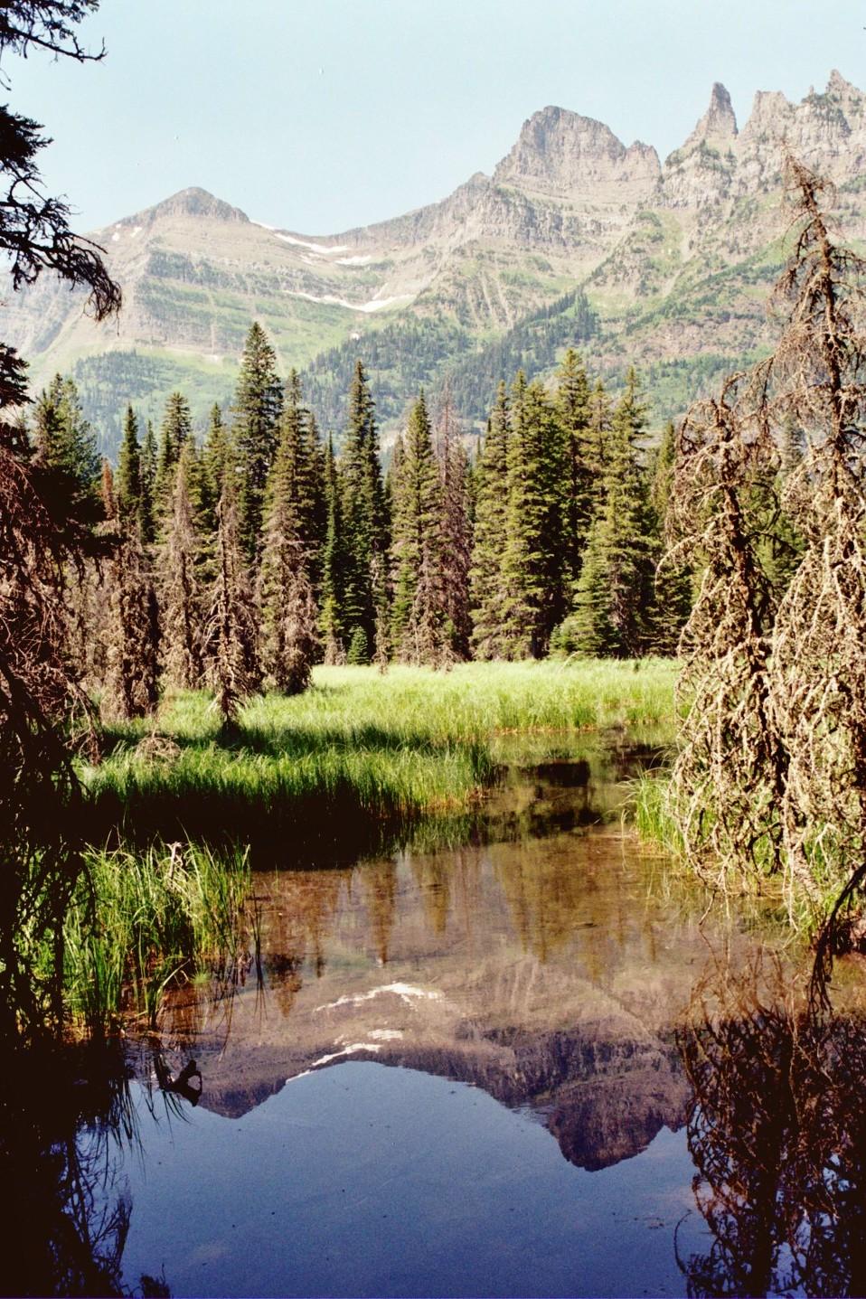 Kootenai  Pond And  Citadel  Peaks