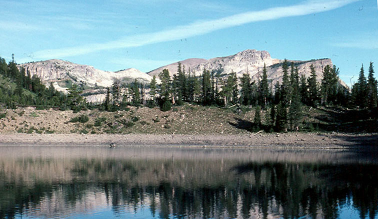 Lake Levale   Bmw