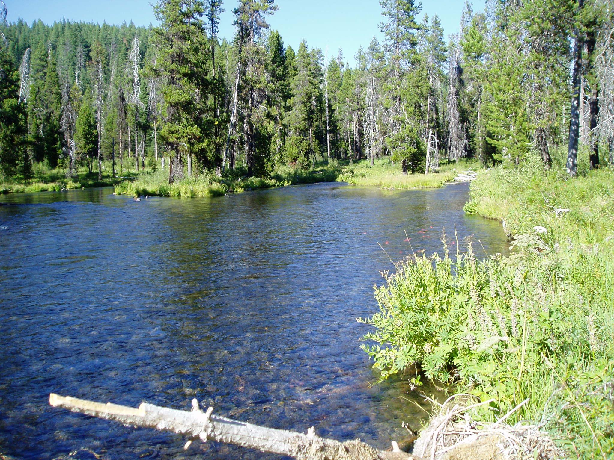 Nu Upstream Of  Lemolo 1