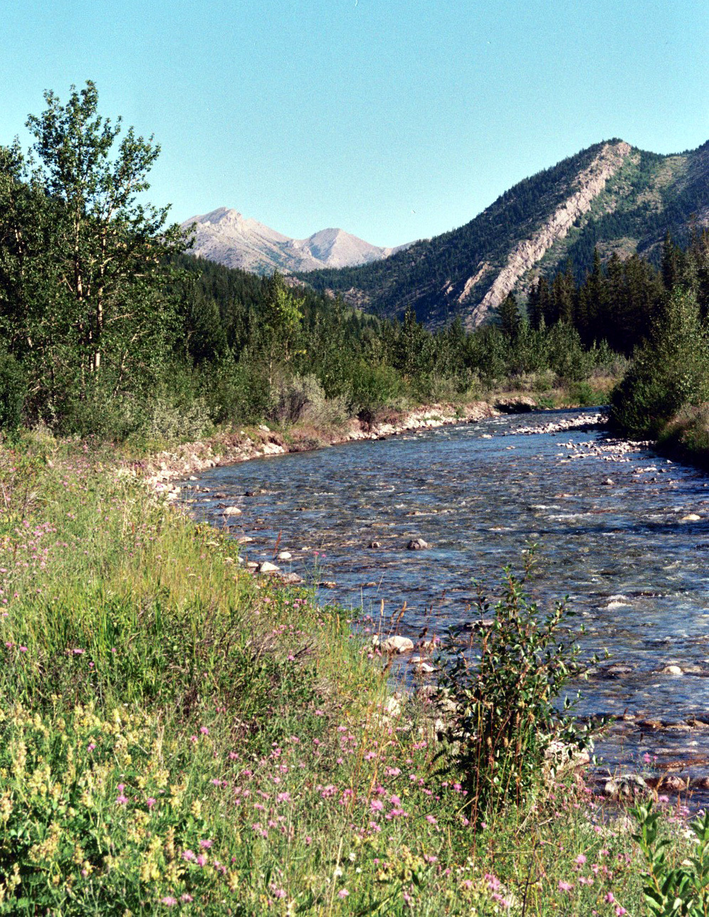 North Fork Teton River