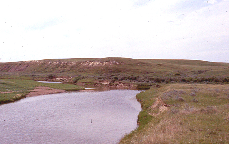 Redwater  River