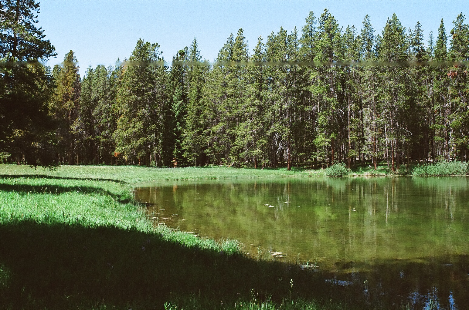Skinner  Pond 2 Photo 2