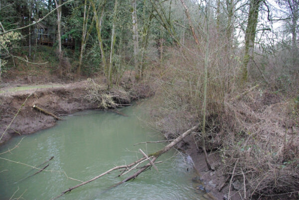 Fanno  Creek  Durham  Oregon