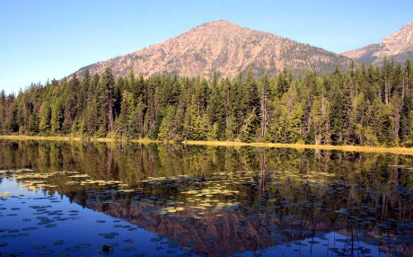 Johns  Lake  Gnp  Hikespeak Com