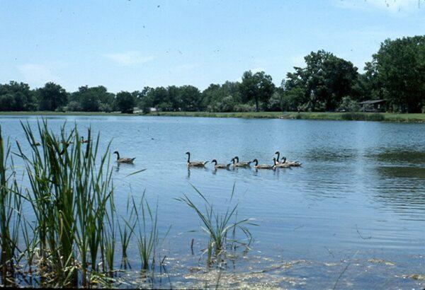Lake  Josephine  Mt 1