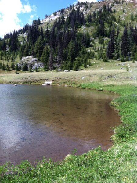Loudon Lake2