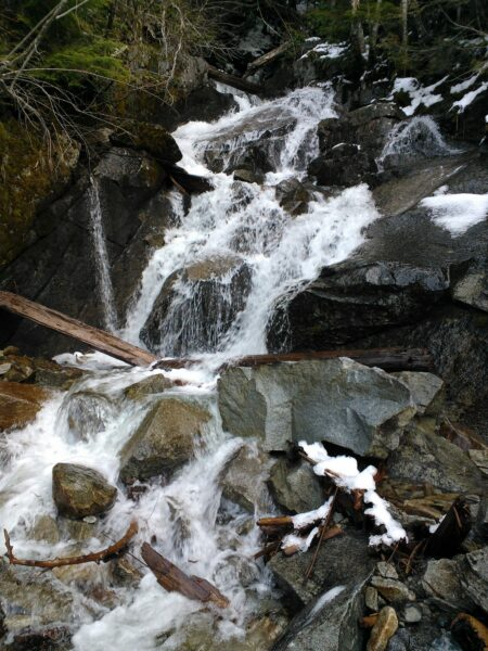 Mason  Creek Aerophilic Habitat
