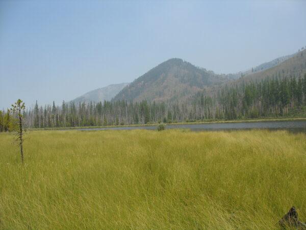 Mud  Lake  Bob  Marshall  Wilderness