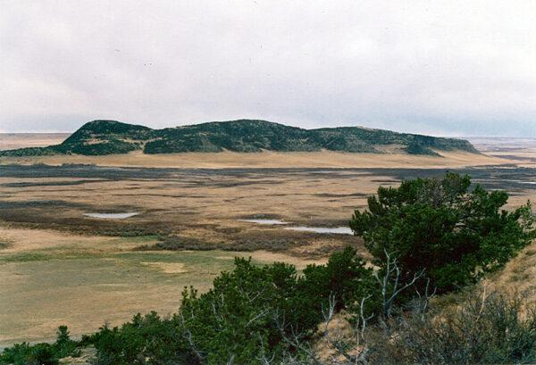 Pine  Butte