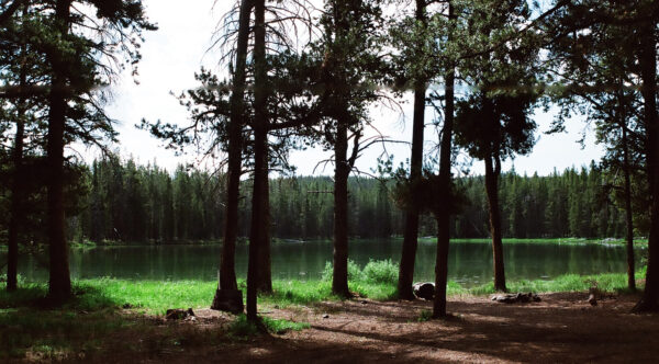 Skinner  Lake