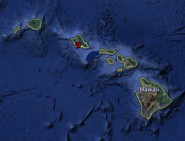 Ulacus Hawaii