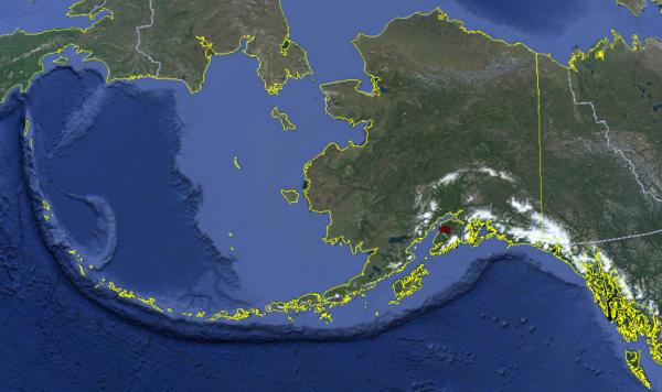 Uldelicatissima  Alaska