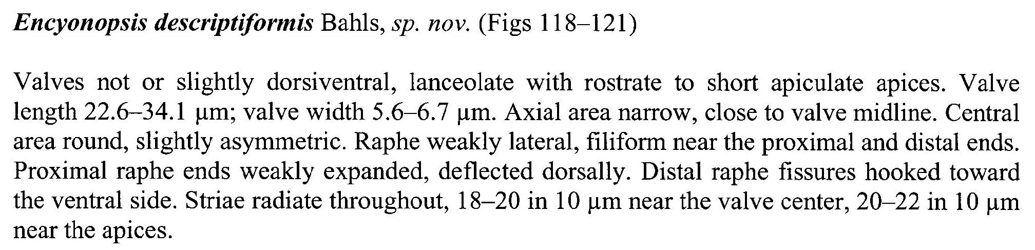 Encyo Descriptiformis Origdesc001