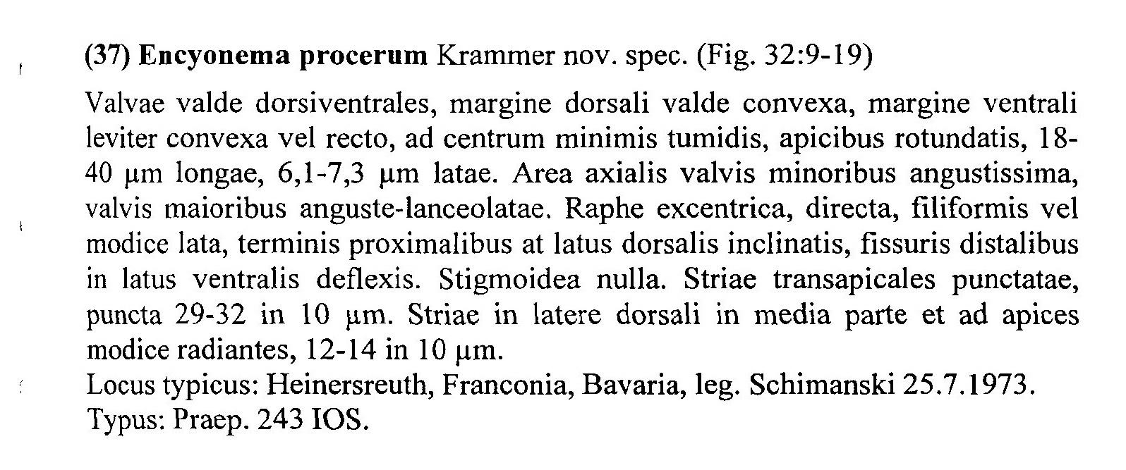 Encyonema Procerum Origdesc001