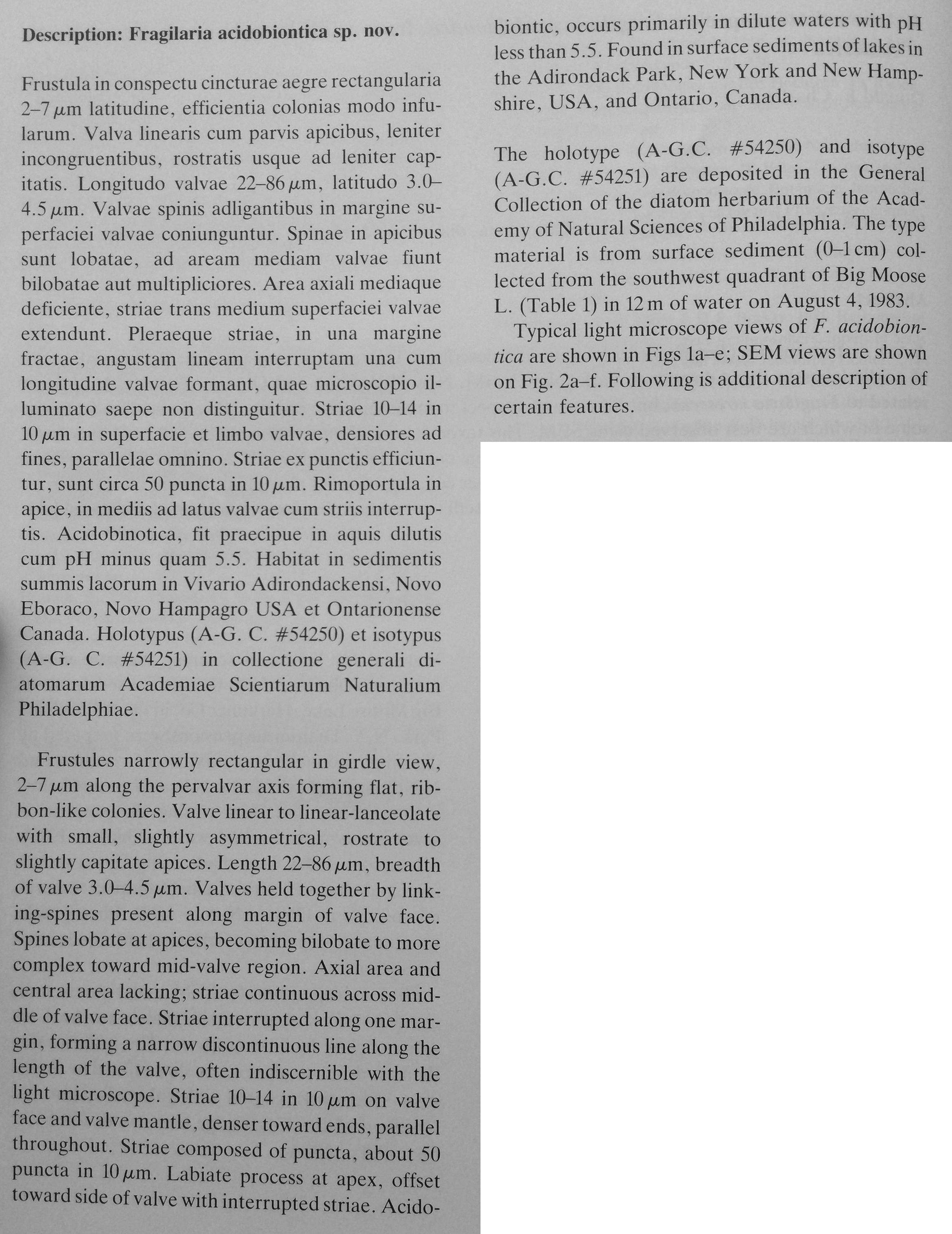 Fracidobiontic Original Description