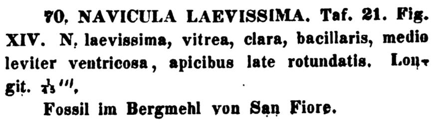 Nalaevissima Original Text