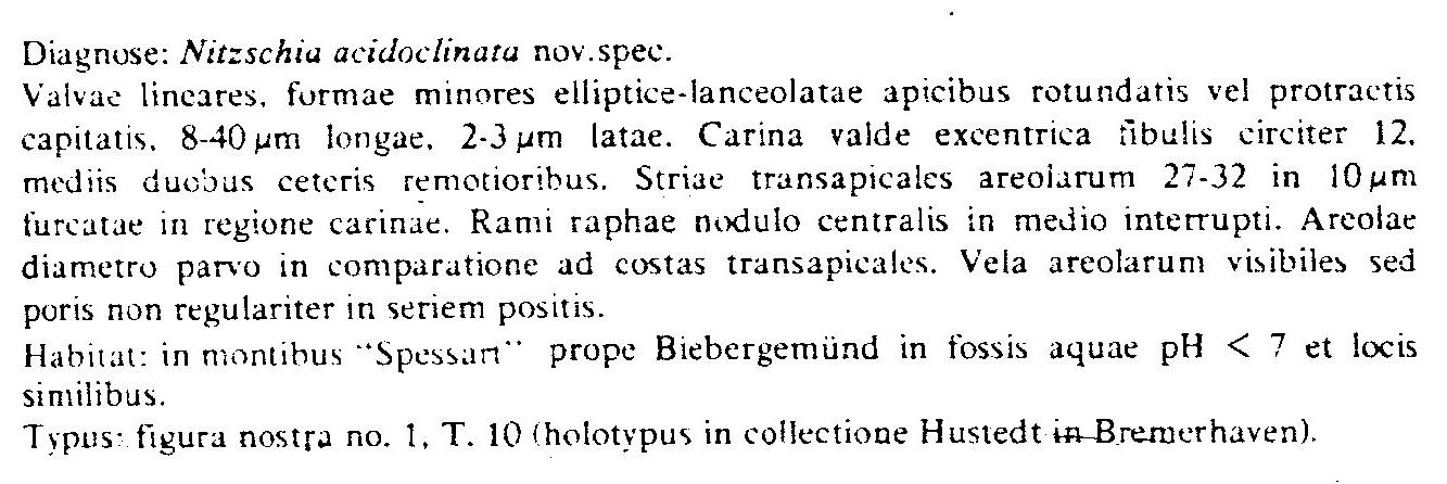 Nitzschia Acidoclinata Origdesc001