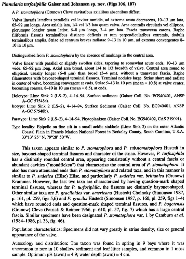 Piturfosiphila Original Text