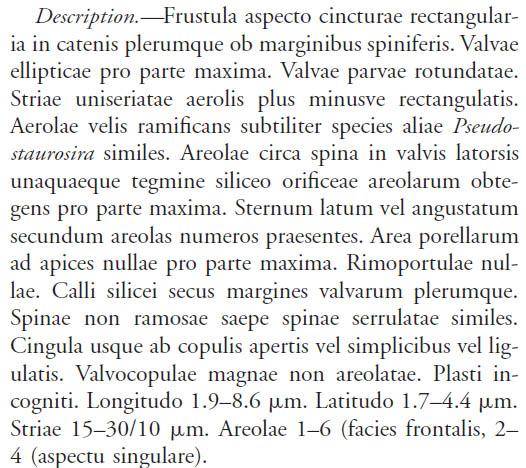 P Trainori Original Description