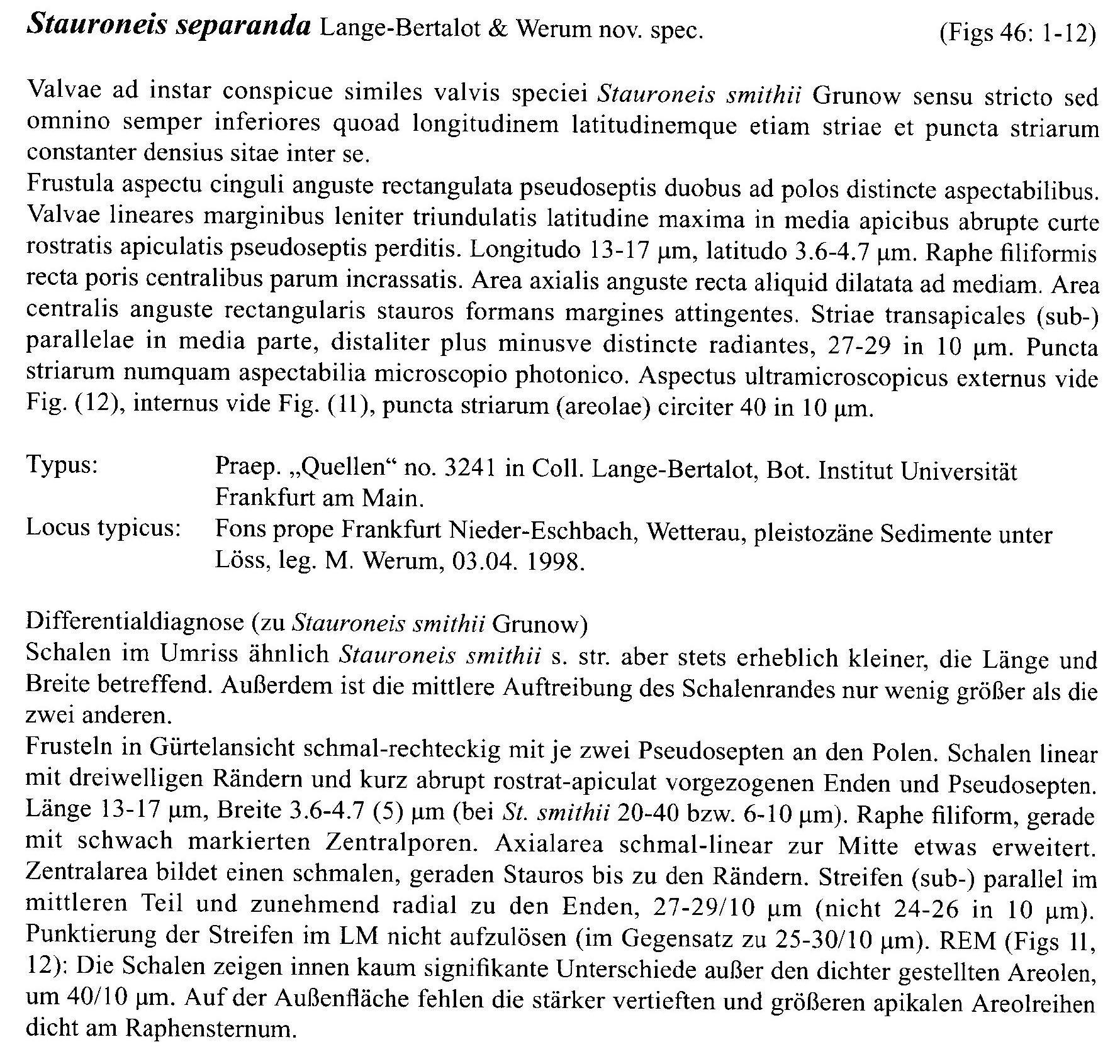 Stauroneis Separanda Origdesc016