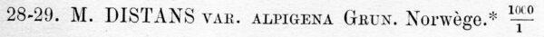 Aulacoseira alpigena orig descr