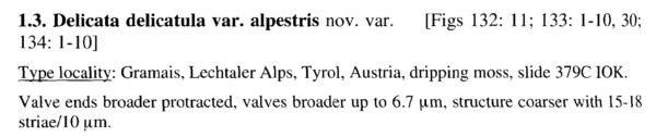 Delicata Alpestris Origdesc001