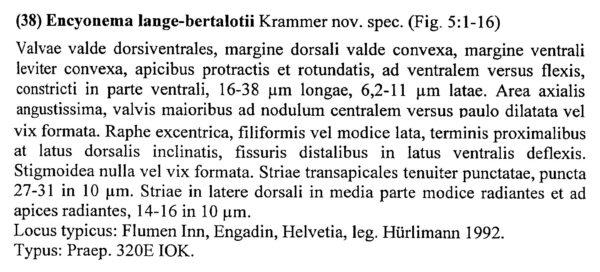 Encyonema Lange Bertalotii Origdesc003