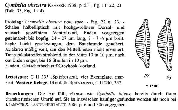 Encyonema Obscurum Origimag001