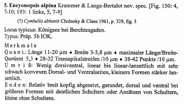 Encyonopsis Alpina Origdesc1018