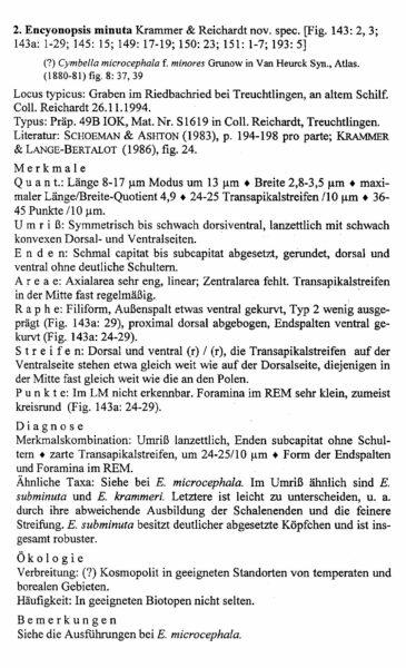 Encyonopsis Minuta Origdesc013