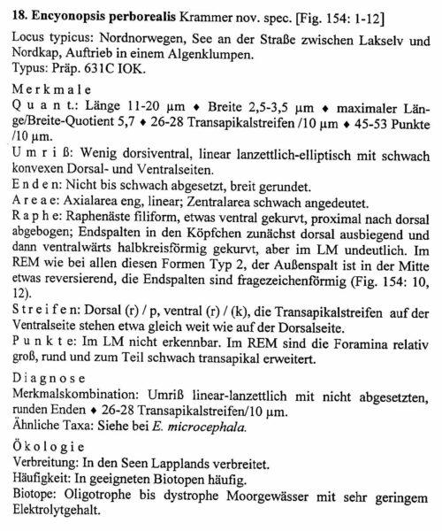 Encyonopsis Perborealis Origdesc024