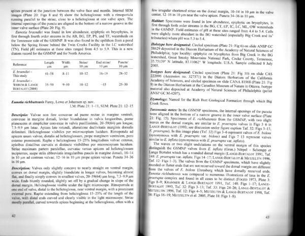 Eunotia Richbuttensis Textscan