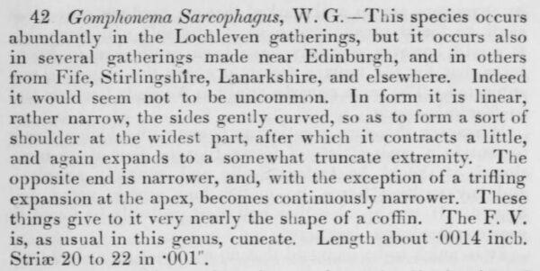 G Sarcophagus Origdes  Jw