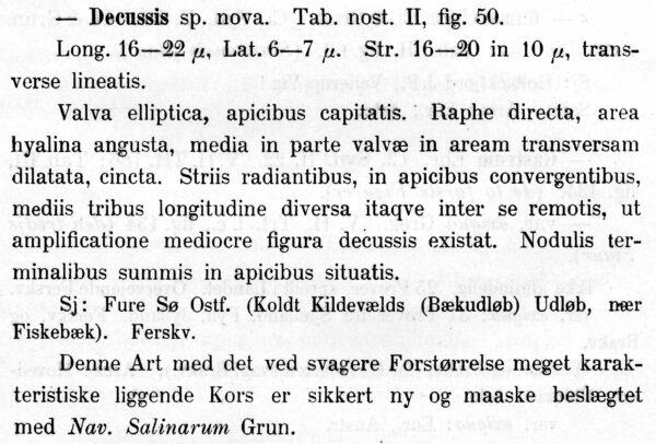 Gedecussis  Orig Descr