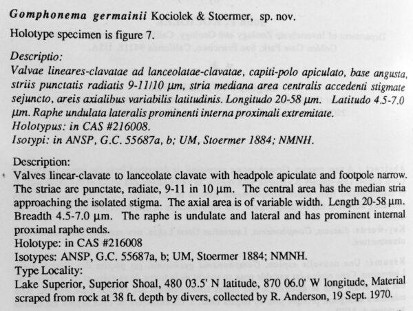 Gogermanii  Ordesc