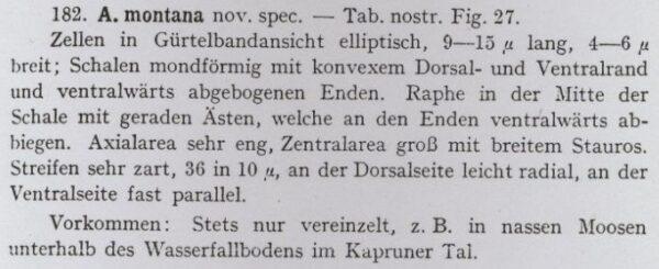 Krasske 1932 Text