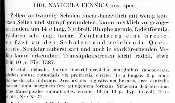 Navicula Fennica Text002