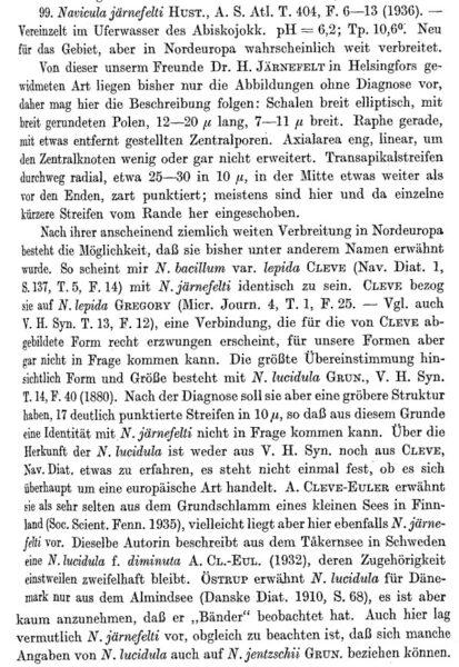 Navicula Jaernefeltii Original Description