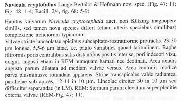 Ncryptofallax Origdesc