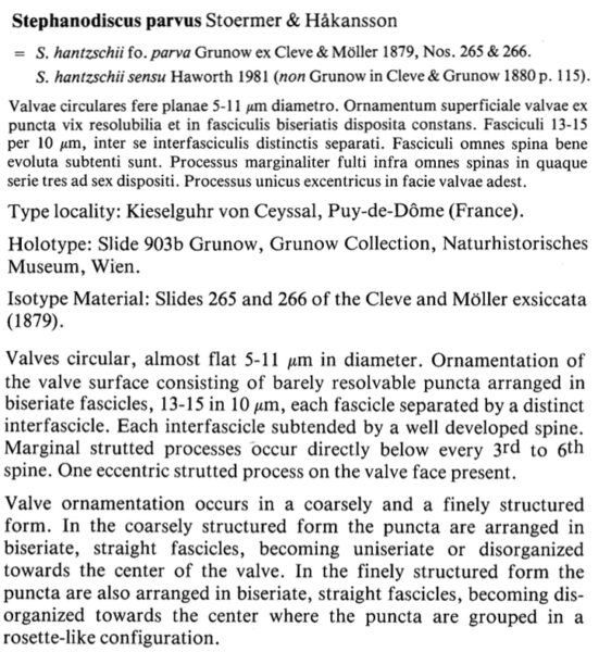 Stparvus Original Description