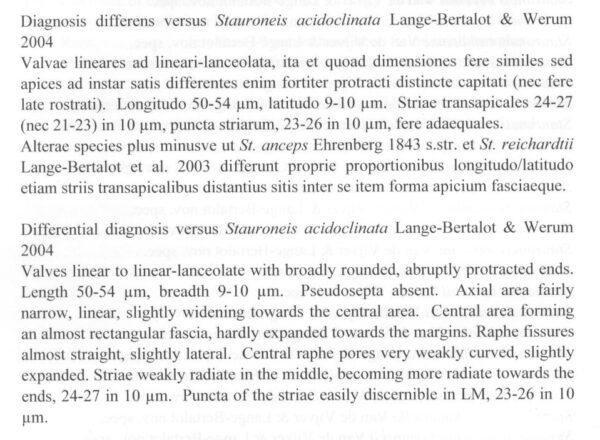 Sacidoclinatopsis Origdesc