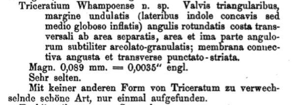 Twhampoense Original Text