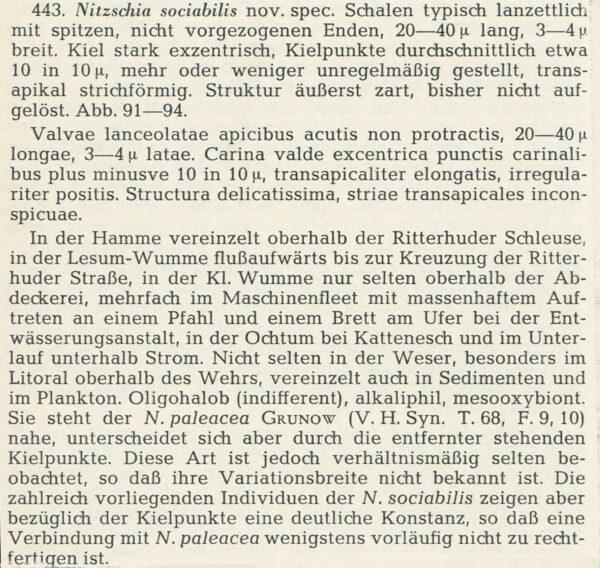 Ni Sociab Describe  Hustedt 1957 1