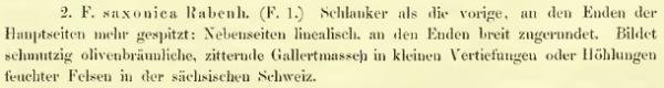 Saxtext